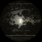 mondnacht_georg_baum_keltische_harfe_rund